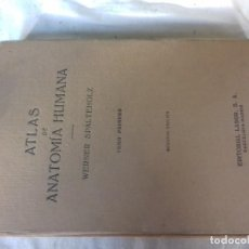 Libros de segunda mano: ATLAS DE ANATOMIA HUMANA-WERNER SPALTEHOLZ-TOMO PRIMERO-EDITORIAL LABOR 2ª EDICION 1959. Lote 115954263