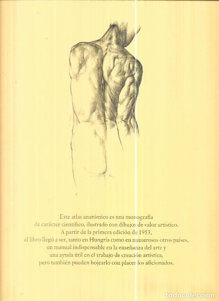 Contemporáneo Grandes Ideas En La Anatomía Y La Fisiología De ...