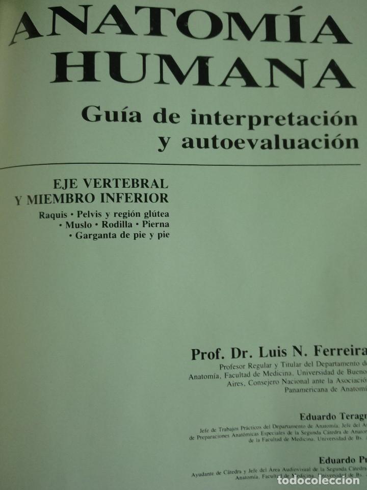 anatomía humana video vhs contomo ilustrado con - Comprar Libros de ...