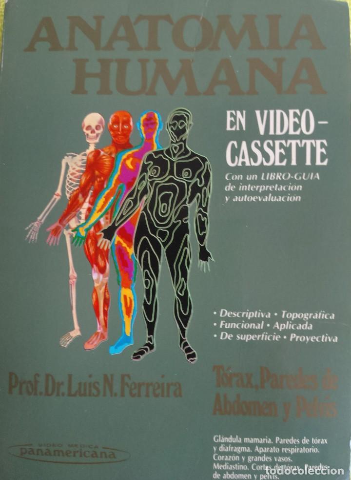 anatomía humana video vhs contomo ilustrado - - Comprar Libros de ...