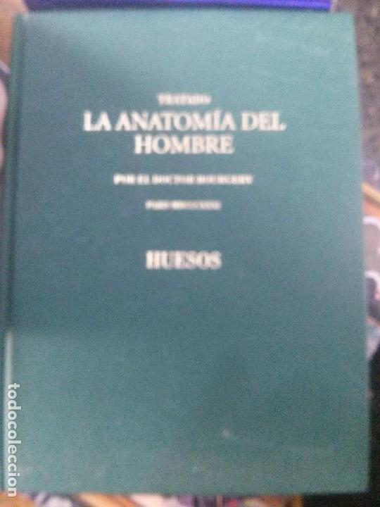 TRATADO LA ANATOMIA DEL HOMBRE ,HUESOS , DOCTOR BOURGERY (Libros de Segunda Mano - Ciencias, Manuales y Oficios - Medicina, Farmacia y Salud)