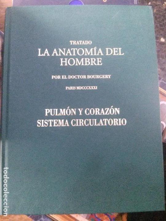 tratado la anatomia del hombre ,pulmon y corazo - Comprar Libros de ...