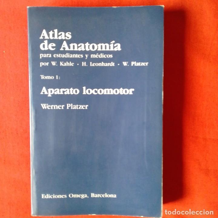 Perfecto Anatomía Para Estudiantes De Medicina Elaboración ...