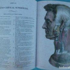 Libros de segunda mano: FACSIMIL DE 1.831 LA ANATOMIA DEL HOMBRE 3 TOMOS. Lote 124031235