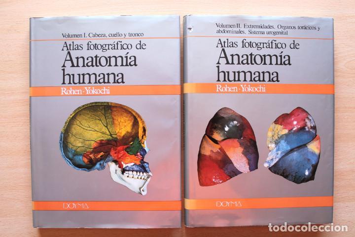 rohen y yokochi - atlas fotográfico de anatomía - Comprar Libros de ...