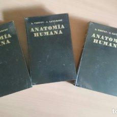 Libros de segunda mano: TRATADO DE ANATOMIA HUMANA TESTUT LATARJET. Lote 127833488