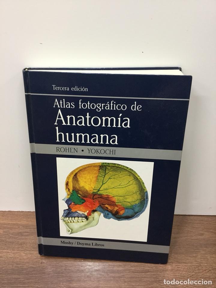 atlas fotografico de anatomia humana rohen yokochi