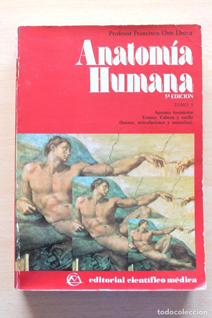 francisco orts llorca - anatomía humana. tomo i - Comprar Libros de ...