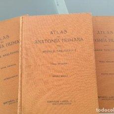 Libros de segunda mano: ATLAS DE ANATOMIA HUMANA-3 TOMOS -COMPLETA-WERNER SPATEHOLZ-2ª EDICION 1963-EDITORIAL LABOR. Lote 131141940