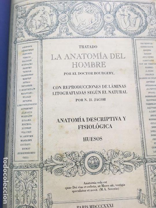 Libros de segunda mano: TRATADO DE LA ANATOMÍA DEL HOMBRE.ANATOMÍA DESCRIPTIVA Y FISIOLÓGICA (HUESOS).2006 DOCTOR BOURGERY - Foto 2 - 132015542