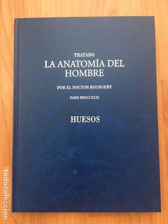 TRATADO DE LA ANATOMÍA DEL HOMBRE.ANATOMÍA DESCRIPTIVA Y FISIOLÓGICA (HUESOS).2006 DOCTOR BOURGERY (Libros de Segunda Mano - Ciencias, Manuales y Oficios - Medicina, Farmacia y Salud)