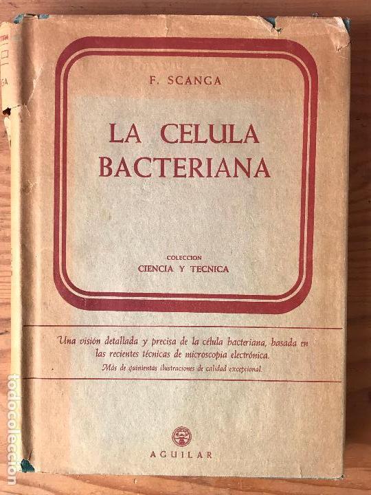 LA CÉLULA BACTERIANA 1959 FRANCO SCANGA EDITORIAL AGUILAR (Libros de Segunda Mano - Ciencias, Manuales y Oficios - Medicina, Farmacia y Salud)