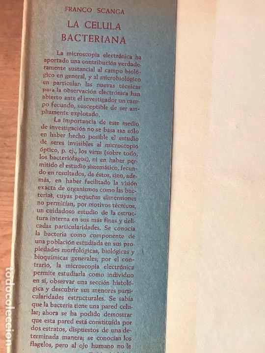 Libros de segunda mano: LA CÉLULA BACTERIANA 1959 FRANCO SCANGA EDITORIAL AGUILAR - Foto 2 - 132340962