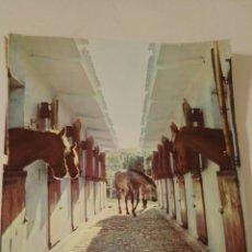 Libros de segunda mano: ANATOMÍA DEL CABALLO 1971. Lote 132246837