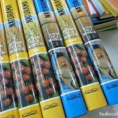 Libros de segunda mano: LA SALUD POR LA NATURALEZA (2 TOMOS) + POR LA NUTRUCION (4 TOMOS) E.SCHNEIDER EDITORIAL SAFELIZ-N 1. Lote 136401766