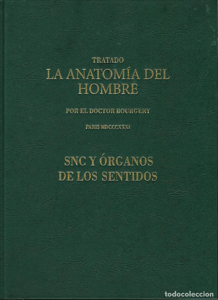 TRATADO ANATOMÍA SER HUMANO (SNC. ÓRGANOS SENTIDOS) DR. BOURGERY. FACSIMIL. ERGON 2004. IMPECABLE. (Libros de Segunda Mano - Ciencias, Manuales y Oficios - Medicina, Farmacia y Salud)