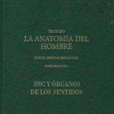 Libros de segunda mano: TRATADO ANATOMÍA SER HUMANO (SNC. ÓRGANOS SENTIDOS) DR. BOURGERY. FACSIMIL. ERGON 2004. IMPECABLE.. Lote 140057438