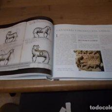 Libros de segunda mano: LA VETERINARIA A TRAVÉS DE LOS TIEMPOS. JAVIER LAFUENTE / YOLANDA VELA. SERVET,ED. 2011. UNA JOYA!!!. Lote 140477762