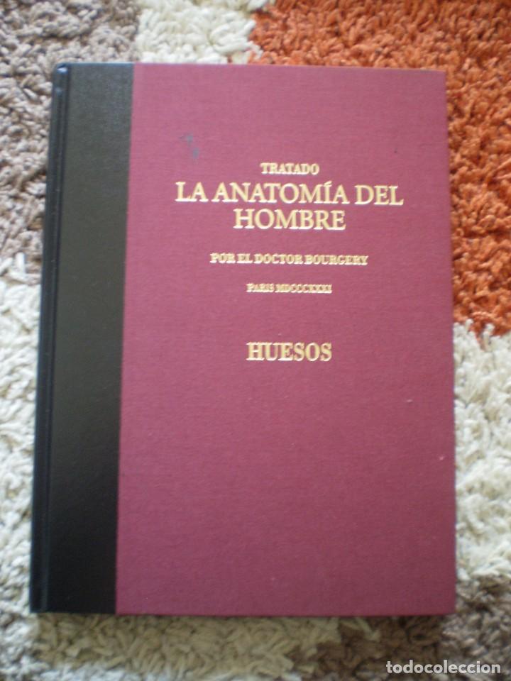 TRATADO ANATOMIA HOMBRE. DOCTOR BOURGERY PARIS 1831. FACSIMIL. HUESOS (Libros de Segunda Mano - Ciencias, Manuales y Oficios - Medicina, Farmacia y Salud)