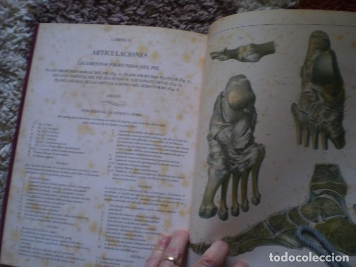 Libros de segunda mano: TRATADO ANATOMIA HOMBRE. DOCTOR BOURGERY PARIS 1831. FACSIMIL. HUESOS - Foto 7 - 144340902