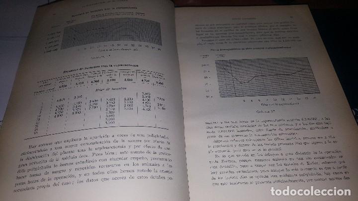 Libros de segunda mano: Archivos de cardiologia y hematologia 1933 - Foto 3 - 146683318