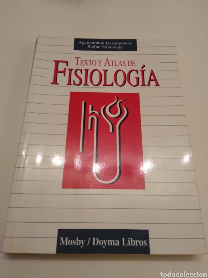 Libros de segunda mano: TEXTO Y ATLAS DE FISIOLOGÍA AGAMEMNON DESPOPOULOS STEFAN SILBERNAGL MOSBY DOYMA LIBROS 1996 - Foto 3 - 149544740