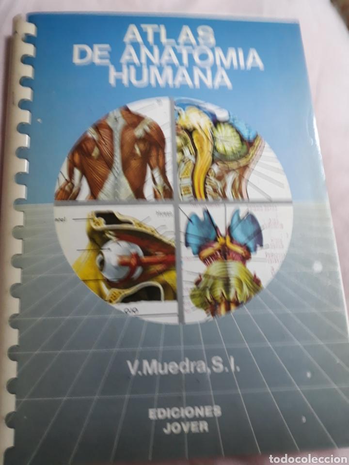 LIBRO: COLECCIÓN ATLAS DE ANATOMÍA HUMANA.-EDICIONES JOVER.- AÑO 1989 (Libros de Segunda Mano - Ciencias, Manuales y Oficios - Medicina, Farmacia y Salud)