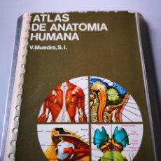 Libros de segunda mano: ATLAS DE ANATOMÍA HUMANA EDICIONES JOVER. Lote 154247486