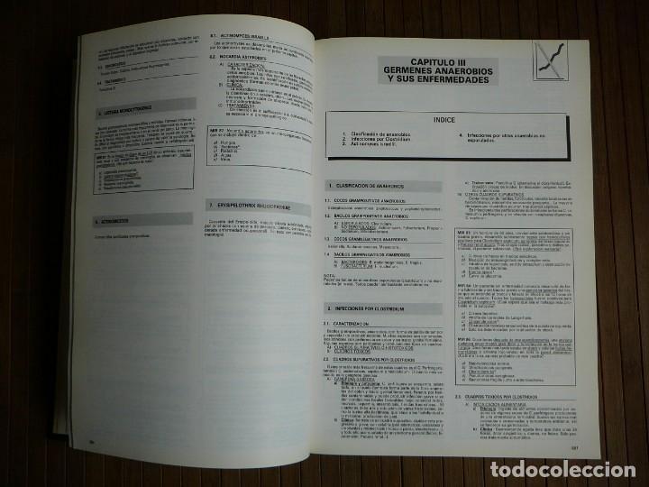 Libros de segunda mano: Manual intensivo para el examen MIR. Tomo II Editorial Luzán 5 1993. Jaime Baladrón Romero y varios. - Foto 19 - 157982774