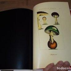 Libros de segunda mano: APÈNDIX AL SISTEMA GENERAL DE TOXICOLOGIA O TRACTAT SOBRE VERINS,MINERALS... MATEU ORFILA. 2008. Lote 161444738