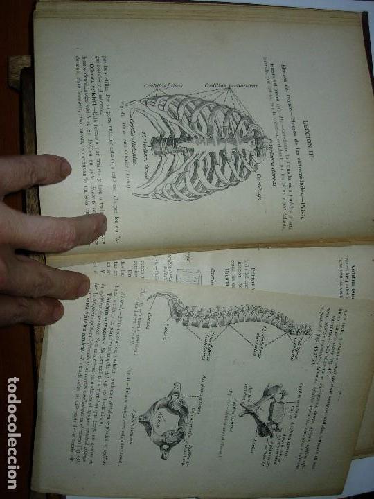 Libros de segunda mano: LA ENFERMERA MODERNA LA ENFERMERA ESPAÑOLA - Foto 8 - 165935098