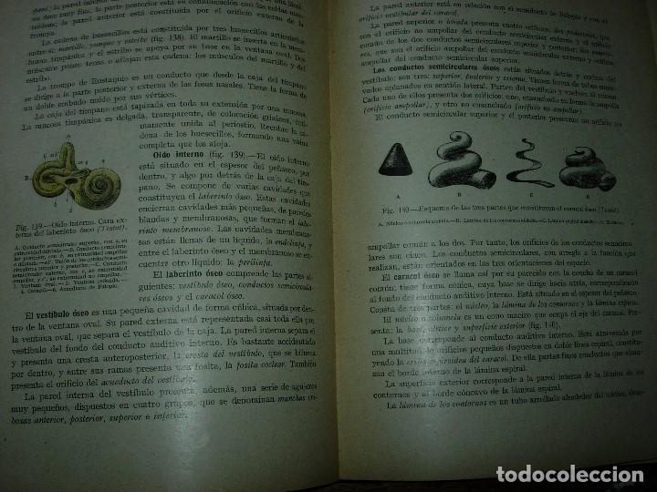 Libros de segunda mano: LA ENFERMERA MODERNA LA ENFERMERA ESPAÑOLA - Foto 11 - 165935098