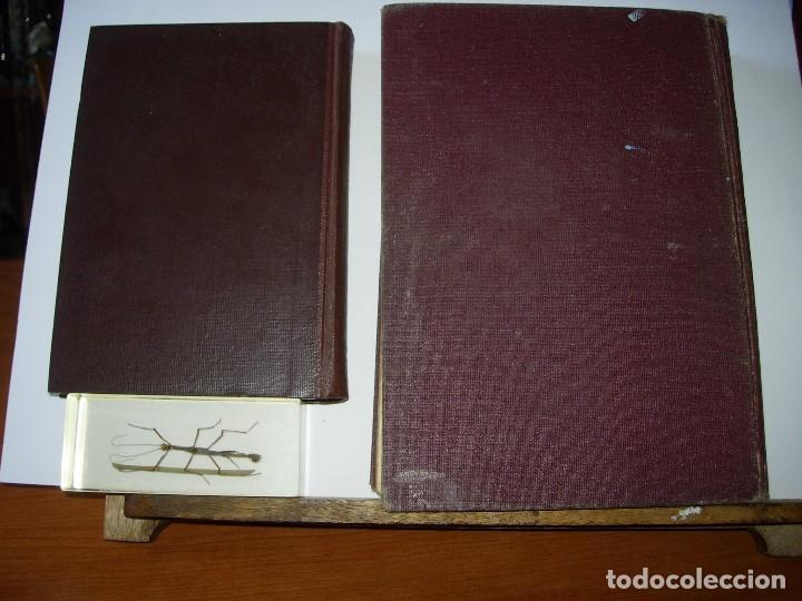 Libros de segunda mano: LA ENFERMERA MODERNA LA ENFERMERA ESPAÑOLA - Foto 12 - 165935098
