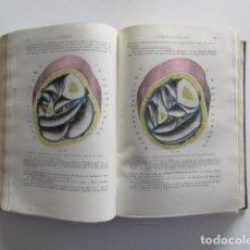 Libros de segunda mano: TESTUT, TRATADO DE ANATOMÍA HUMANA, TOMO SEGUNDO, ANGIOLOGÍA, SISTEMA NERVIOSO CENTRAL, 1940. Lote 169133668