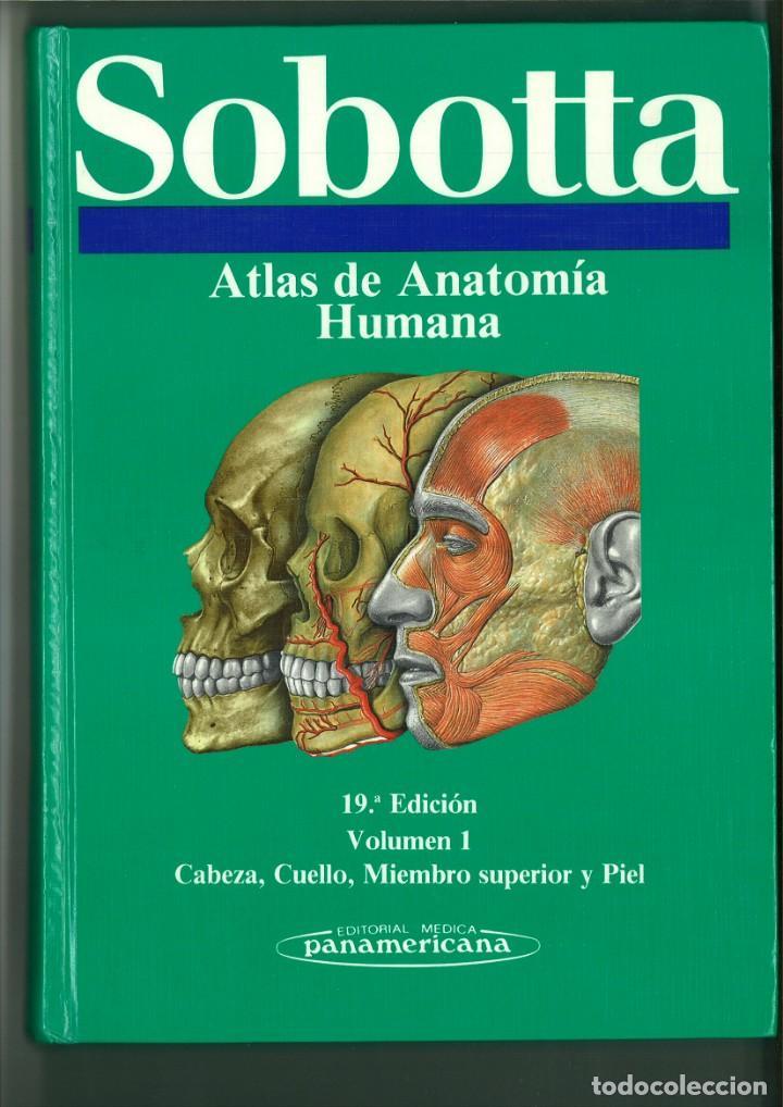 ATLAS DE ANATOMÍA HUMANA SOBOTTA. JOCHEN STAUBESAND (Libros de Segunda Mano - Ciencias, Manuales y Oficios - Medicina, Farmacia y Salud)