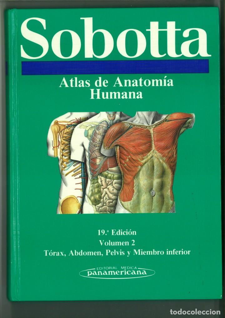 Libros de segunda mano: ATLAS DE ANATOMÍA HUMANA SOBOTTA. Jochen Staubesand - Foto 2 - 171522769