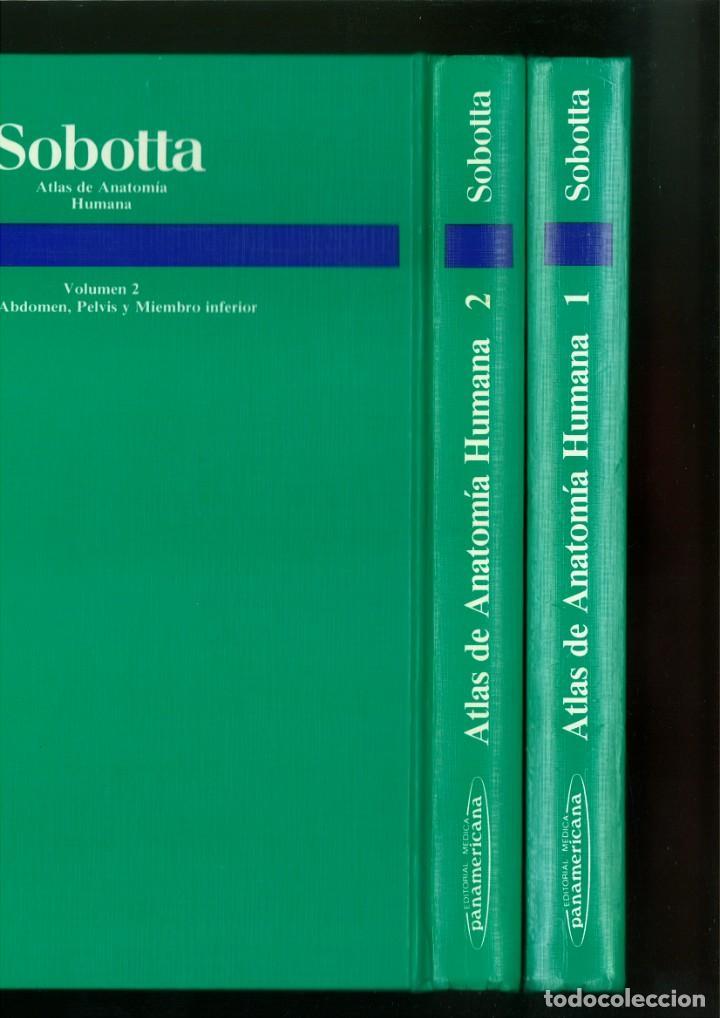 Libros de segunda mano: ATLAS DE ANATOMÍA HUMANA SOBOTTA. Jochen Staubesand - Foto 3 - 171522769