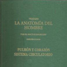 Libros de segunda mano: TRATADO LA ANATOMÍA DEL HOMBRE: ANATOMÍA DESCRIPTIVA Y FISIOLOGÍA. DOCTOR BOURGERY. Lote 172164923