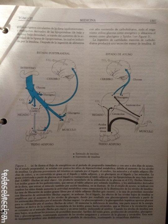 Libros de segunda mano: Libro SCIENTIFIC AMERICAN MEDICINA VOLUMEN 3 . ENDOCRINO, METABOLISMO,NEUROLOGIA,PSIQUIATRIA... - Foto 5 - 173813402