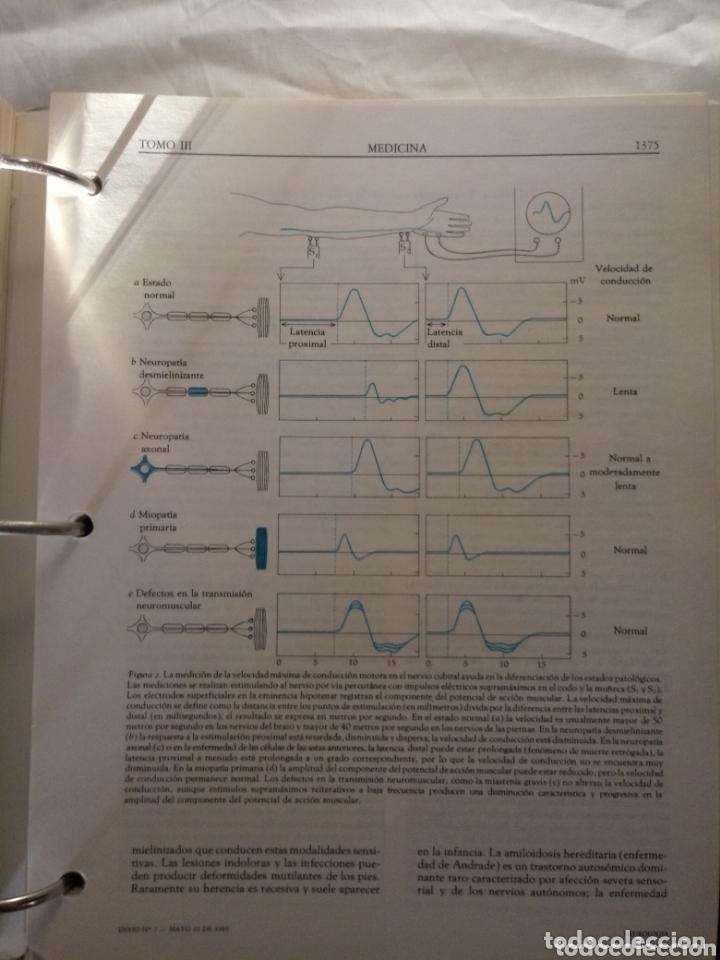 Libros de segunda mano: Libro SCIENTIFIC AMERICAN MEDICINA VOLUMEN 3 . ENDOCRINO, METABOLISMO,NEUROLOGIA,PSIQUIATRIA... - Foto 8 - 173813402