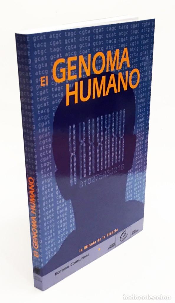 EL GENOMA HUMANO - LA MIRADA DE LA CIENCIA, EDITORIAL COMPLUTENSE - GENÓMICA, BIOLOGÍA, MEDICINA (Libros de Segunda Mano - Ciencias, Manuales y Oficios - Medicina, Farmacia y Salud)
