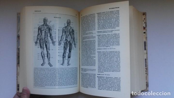 Libros de segunda mano: Nuevo diccionario médico (1987). Planeta Agostini. Medicina. Encuadernación artesanal. - Foto 13 - 176858507