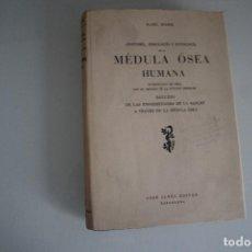 Libros de segunda mano: ANATOMÍA, FISIOLOGÍA Y PATOLOGÍA DE LA MÉDULA OSEA HUMANA KRAL ROHR JOSE JANES EDITOR. Lote 183544936
