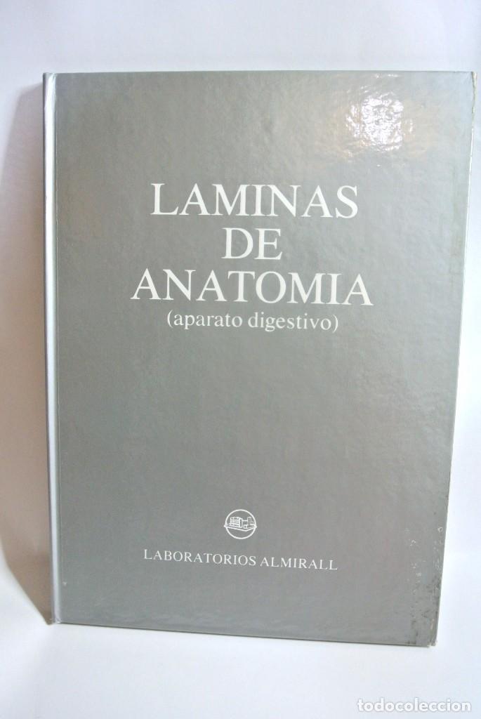LIBRO LAMINAS DE ANATOMIA APARATO DIGESTIVO, OMEGA FARMACEUTICA (Libros de Segunda Mano - Ciencias, Manuales y Oficios - Medicina, Farmacia y Salud)