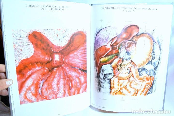 Libros de segunda mano: Libro LAMINAS DE ANATOMIA Aparato Digestivo, OMEGA FARMACEUTICA - Foto 2 - 186020600