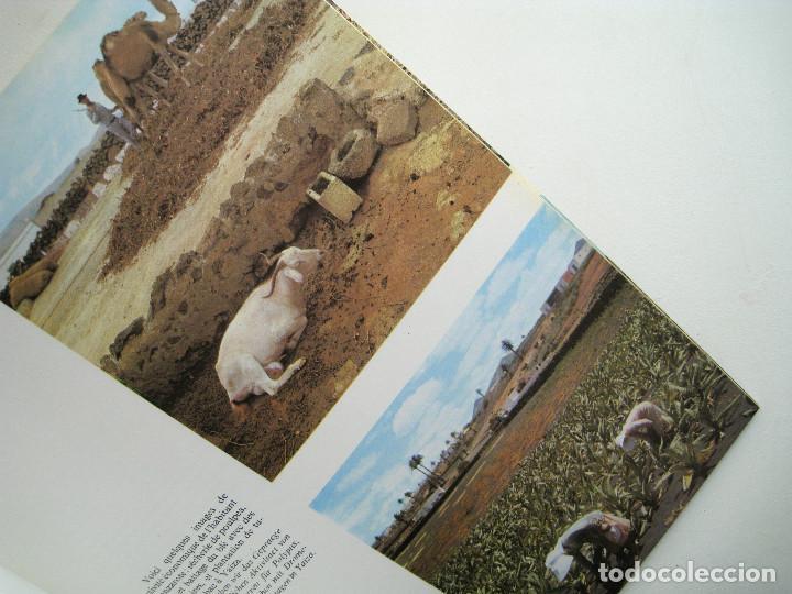 Libros de segunda mano: LANZAROTE EN COLOR. COLECCIÓN IBÉRICA. EDITORIAL EVEREST. 1978. ESPAÑOL, FRANÇAIS, ENGLISH, DEUTSCH. - Foto 4 - 189882951