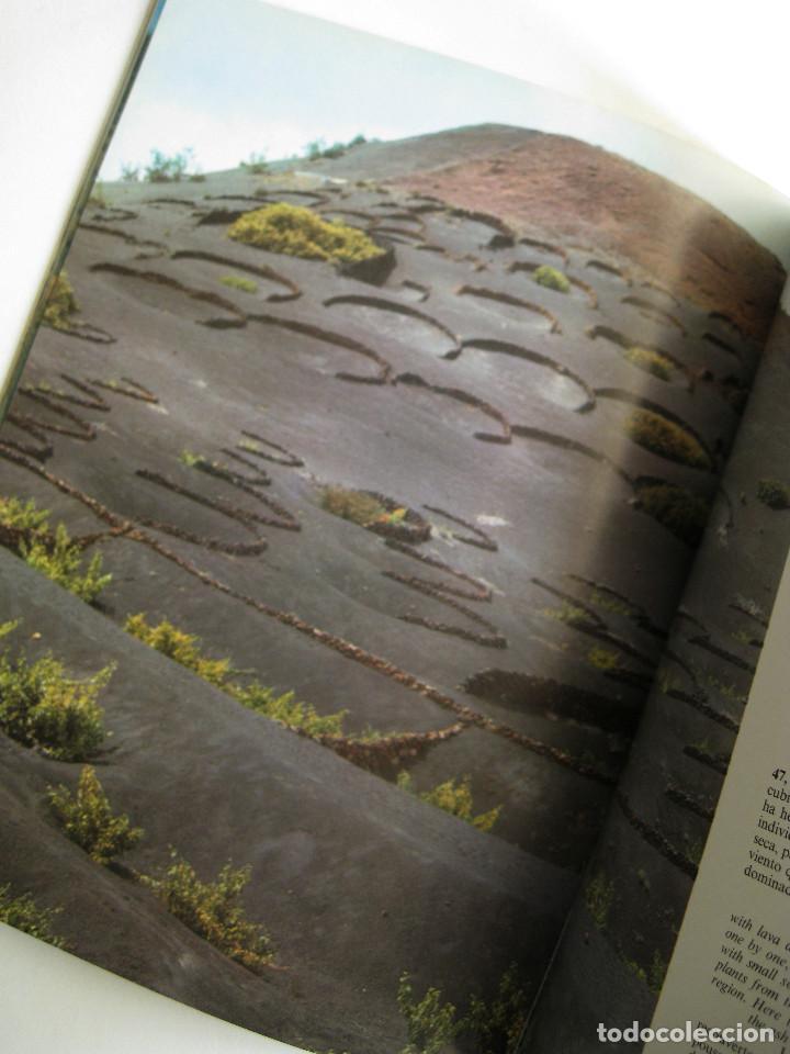 Libros de segunda mano: LANZAROTE EN COLOR. COLECCIÓN IBÉRICA. EDITORIAL EVEREST. 1978. ESPAÑOL, FRANÇAIS, ENGLISH, DEUTSCH. - Foto 5 - 189882951