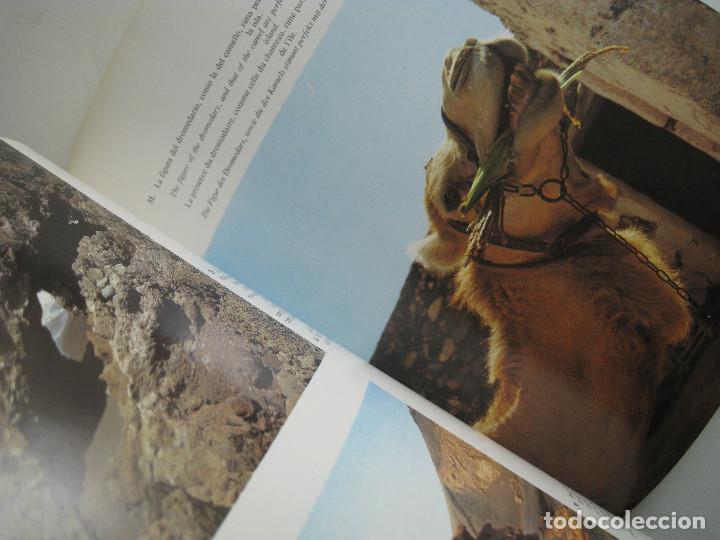 Libros de segunda mano: LANZAROTE EN COLOR. COLECCIÓN IBÉRICA. EDITORIAL EVEREST. 1978. ESPAÑOL, FRANÇAIS, ENGLISH, DEUTSCH. - Foto 6 - 189882951