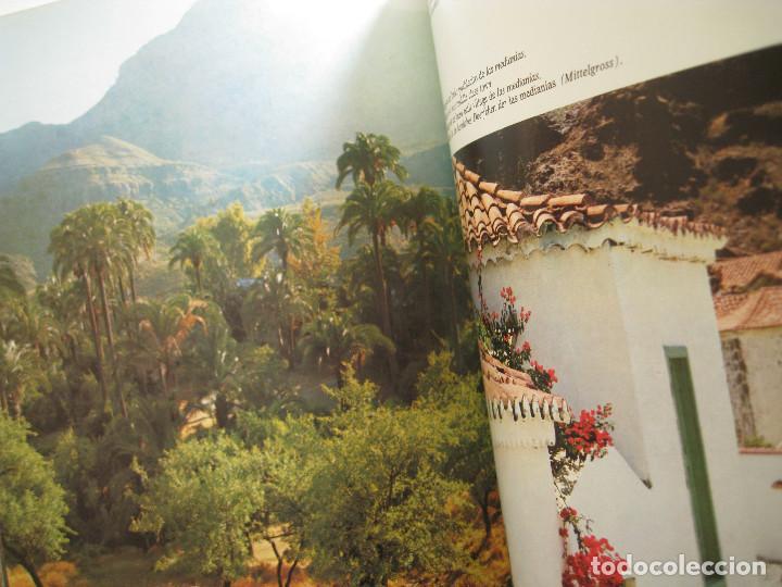 Libros de segunda mano: GRAN CANARIA EN COLOR. COLECCIÓN IBÉRICA. ED. EVEREST 1978. ESPAÑOL, FRANÇAIS, ENGLISH, DEUTSCH. - Foto 6 - 189884616