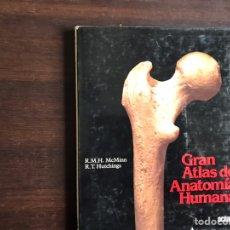 Libros de segunda mano: GRAN ATLAS DE ANATOMÍA HUMANA 2.. Lote 194980797